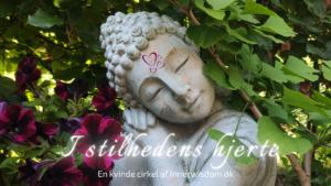 I stilhedens hjerte (1)