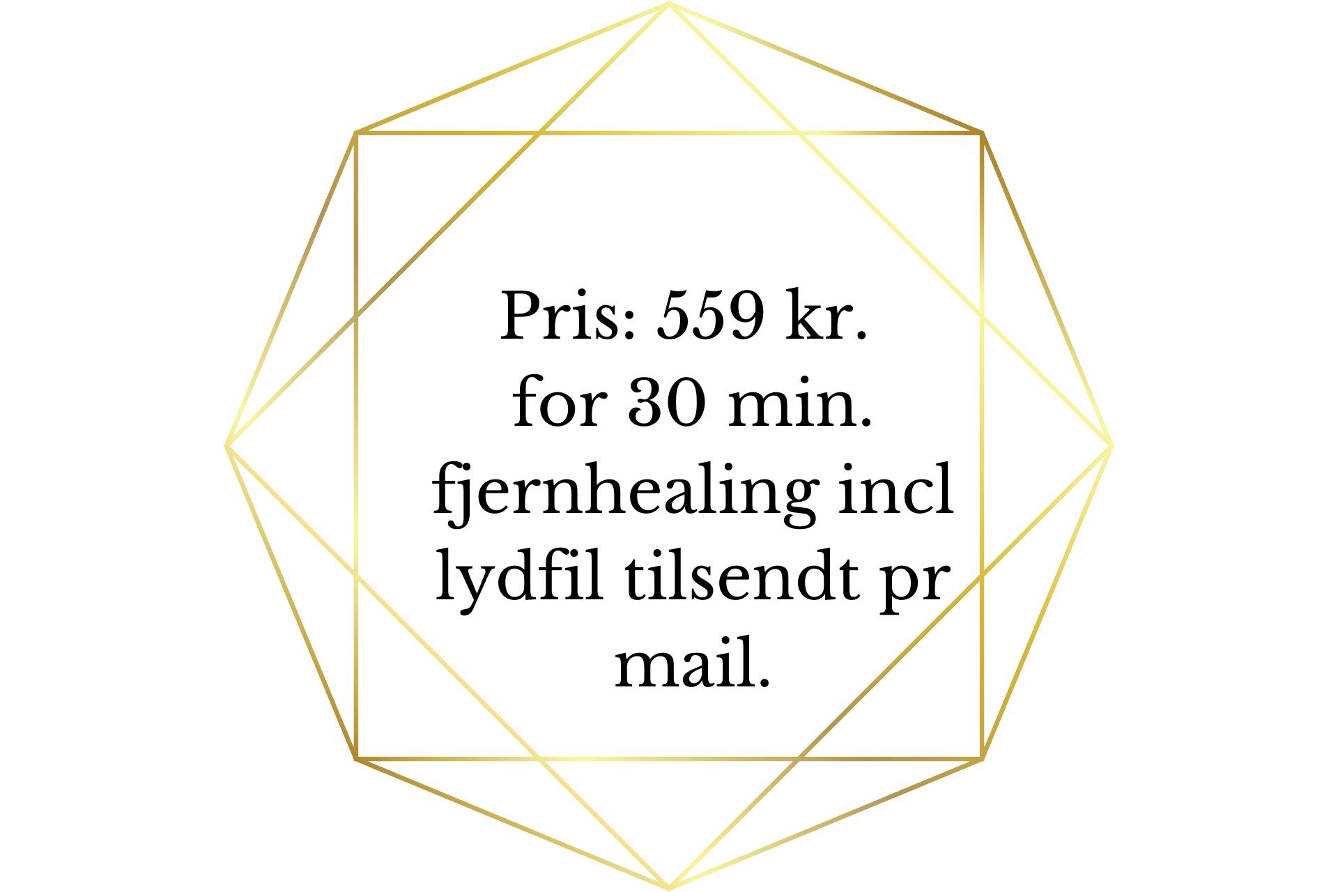 Pris 775 kr. for 60 minutters online samtale via tlf.skypemessenger. (3)